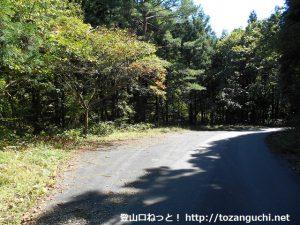 林道水越亀山線の大潰山登山口手前の路肩の駐車スペース
