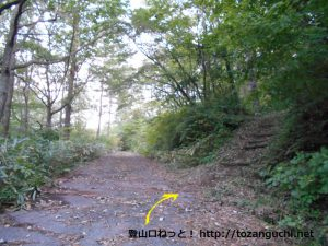龍頭山の掛札コースの入口