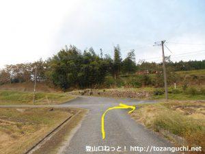 竜頭山登山口バス停前から県道316号線の方に進み、そのすぐ先で左折した後に小さな橋を渡った先の十字路を右折する