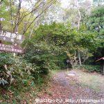 龍頭山の登山口(滝見・掛札コース)にバスでアクセスする方法