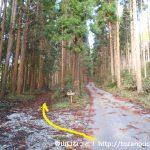 三国山登山口前の林道分岐