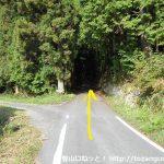 三国山登山口に向かう途中の車道