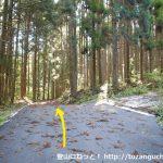 天銀山の登山口となる林道分岐