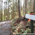 天銀山の登山口に設置されている道標