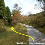 美しい森の入口にある剣山の登山口(卯の花道遊歩道入口)