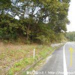 キャンプ場前バス停から県道50号線を東に進む