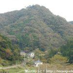 山麓から見る猫山(育霊神社)