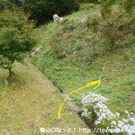 育霊神社の奥の院の登り口の鳥居のすぐ下