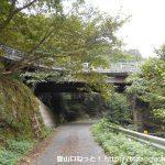 勝山美しい森に行く途中のループ橋前