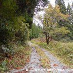 金ヶ谷山の南側の登山口に至る林道の入口