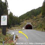 野土路トンネルの南口前から左の林道に入るところ