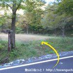 越畑キャンプ場前の林道から角ヶ仙登山口の方に進む