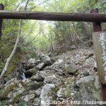 後山・船木山(行者山奥の院)の登山口にバスでアクセスする方法
