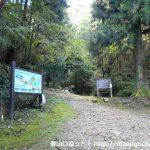 七種山登山口となる林道終点