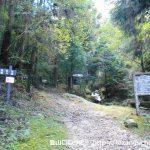 七種山登山口となる林道終点に設置してある七種滝の遊歩道を示す道標