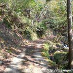 蘇武山の寺河内コースに続く林道