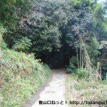 鴨前大池に行く途中の林の中の小路