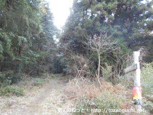 宮路山の登山口から見る宮道天神社奥の院に向かう登山道