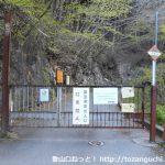 川苔山の登山口 細倉橋に川乗橋から歩いてアクセスする方法