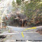 桑谷山の北側の林道の終点手前で坂道に入るところ
