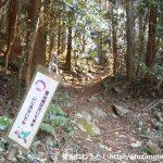 桑谷山の北側の林道終点の登山コースの入口