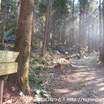 桑谷山の桑谷キャンプ場側の登山コース入口
