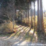 京ヶ峰の登山コースの入口(法林寺の西側)