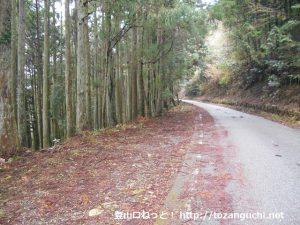 林道平野線の鎌沢橋にある真富士山登山口前の駐車スペース
