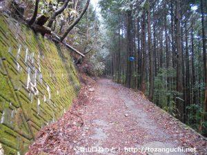 中の段(十枚山登山口)に向かう林道