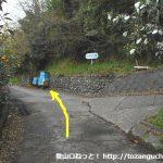 薩埵峠に向かう坂道の途中の分岐