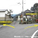 中沢バス停前の分岐