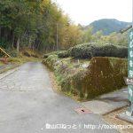 中沢公民館前から貫ヶ岳の登山コースに入る