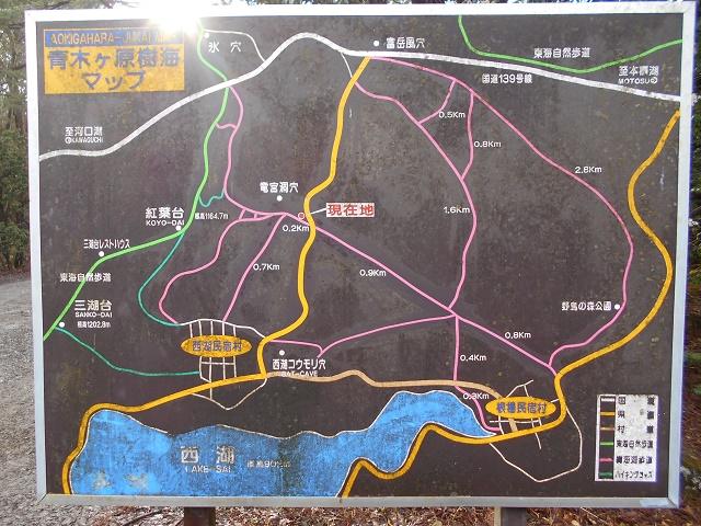 竜宮洞穴入口に設置してある青木ヶ原樹海ハイキングコースの案内板