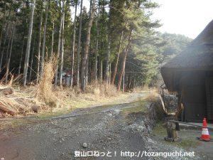 西湖いやしの里根場の古民家エリア裏手の林道
