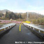 竹居バス停から稲山けやきの森に行く途中で広めの車道に出るところ