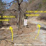 大石峠入口の手前の林道分岐