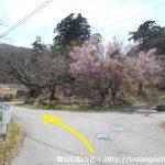 檜峯神社に向かう林道に入る手前の分岐