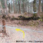 杓子山・立ノ塚峠の登山口前の車道終点(※工事中)の横で登山道に入るところ