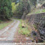 八高山のなだらかコースの入口に設置されている道標