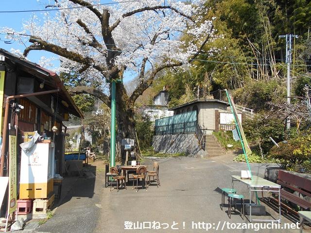 小仏城山の登山口にある富士見茶屋