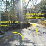 愛川ふれあいの村裏手の高野山と仏果山の登山コースの分岐地点