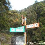 高松山の登山口に向かう途中の林道の入口分岐に設置されている高松山の登山コースを示す道標