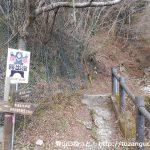 西丹沢ビジターセンターの少し奥にある檜洞丸のつつじ新道コースの登山口
