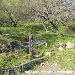 幕山公園の湯河原梅林にある幕山登山口