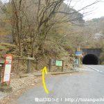 国道414号線の天城トンネル北口横から天城峠の登山口に入る