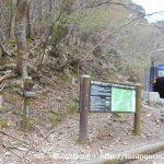 天城峠(天城越え)と八丁池にバスでアクセスする方法