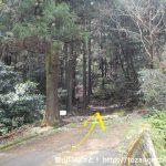 沼商前バス停から山側の坂道を登った突き当りにある徳倉山の登山口