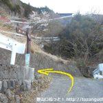鷹ノ巣山の浅間尾根コースの手前で峰谷からの車道に出合うところ