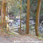棒ノ折山の登山口 奥茶屋にバスでアクセスする方法